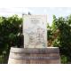 Carte du Vignoble Français sur bois