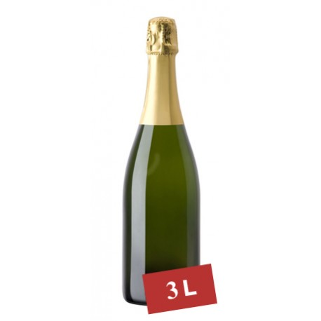Double Magnum Champagne Ayala Brut