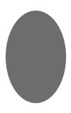 Étiquette : 9x12 cm Ovale