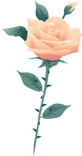 000000000000000000000000000000000000000000000000000000000-rose-blanche-by-clem_render.png