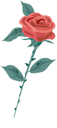 rose_render.png